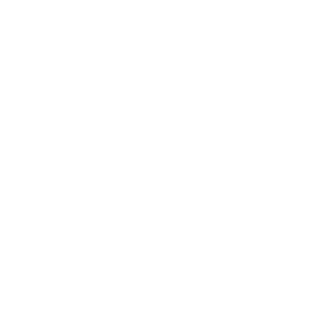 white dell logo-transparent2