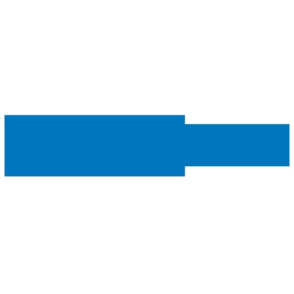 zscaler logo
